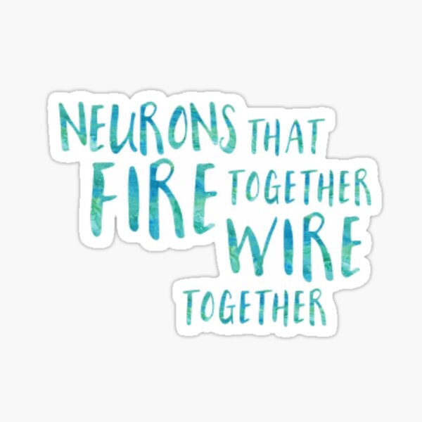Neurons Fire Together Sticker Sticker