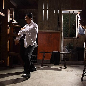 Donnie Yen Ip Man by bammydfbb