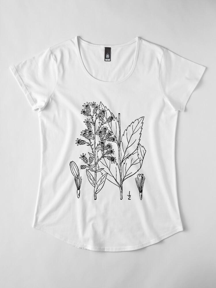Alternate view of Botanical Scientific Illustration Black and White Premium Scoop T-Shirt