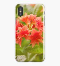 Il Tasso Rhododendron called Azalea iPhone Case/Skin
