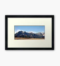 Jasper  Framed Print