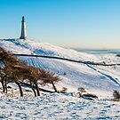 Hoad in Snow by Stephen Miller