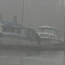 floating in the fog by memaggie