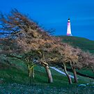 Hoad light painting by Stephen Miller