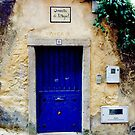 Portuguese Blue  by lanebrain photography