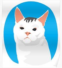 Goofy White Cat Portrait Poster