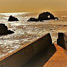 Lands End Heart Rock by Cheri Sundra