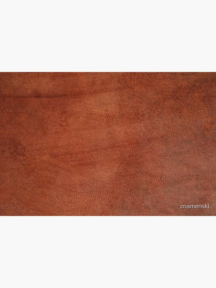 brown leather, science fiction, speculative fiction, imaginative concept, futuristic science, futuristic technology by znamenski