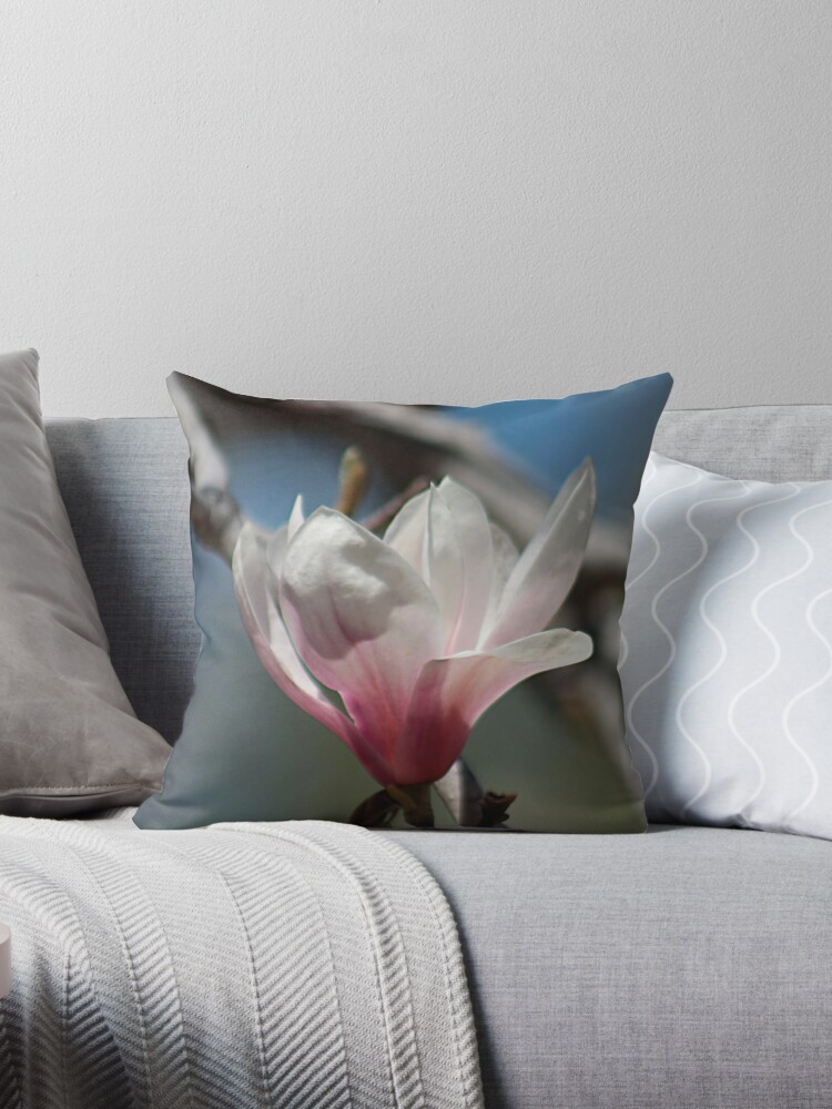 Magnolienblüte von Linda Crockett