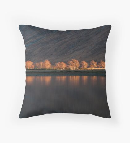 The Last Vestiges of Light Throw Pillow