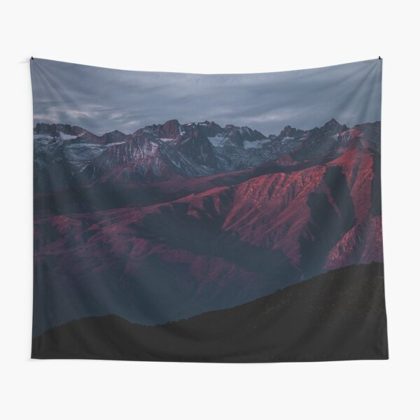 Minds In Nature   Modern Printing   Ancient Bristlecone   USA   #30207911 Tapestry
