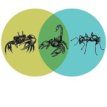 Ant Crab Scorpion Venn Diagram by GuyBlank