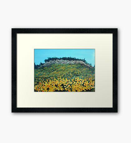 Broom Flowers, Capri Framed Print