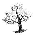 Simple Tree by przezajac