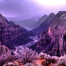 Straight Down Zion by Wayne King
