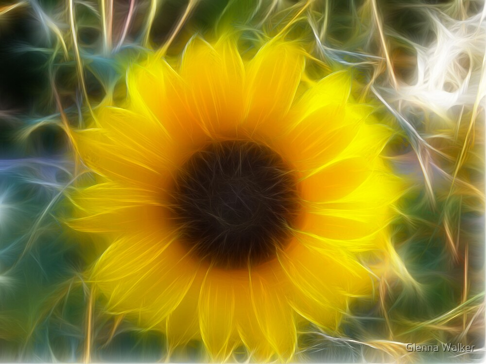 Fractalius Sunflower by Glenna Walker