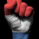 Flagge der Niederlande auf einer angehobenen geballten Faust von jeff bartels