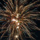 Fireworks Beauty by Bill Spengler