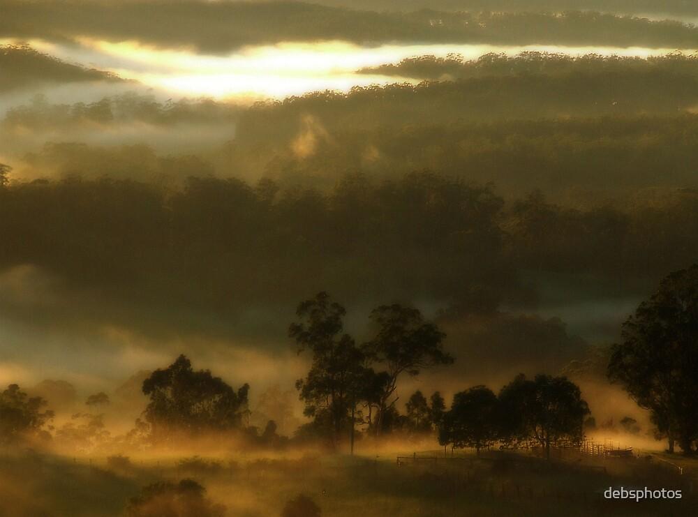 """""""Gentle Awakening"""" by debsphotos"""