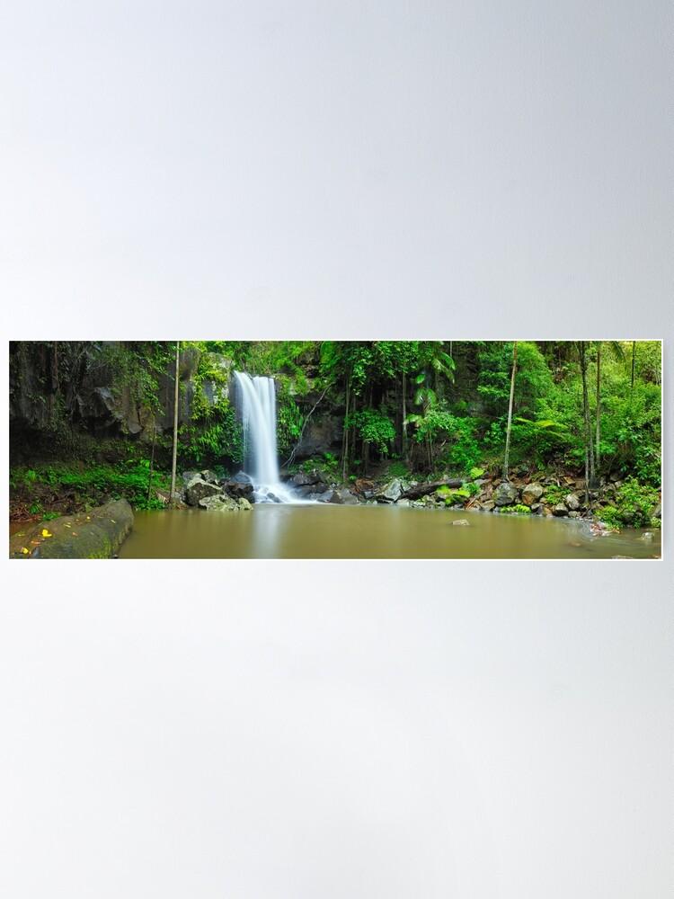 Alternate view of Curtis Falls, Tamborine National Park, Queensland Poster