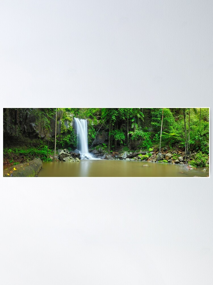 Alternate view of Curtis Falls, Tamborine National Park, Queensland Poster
