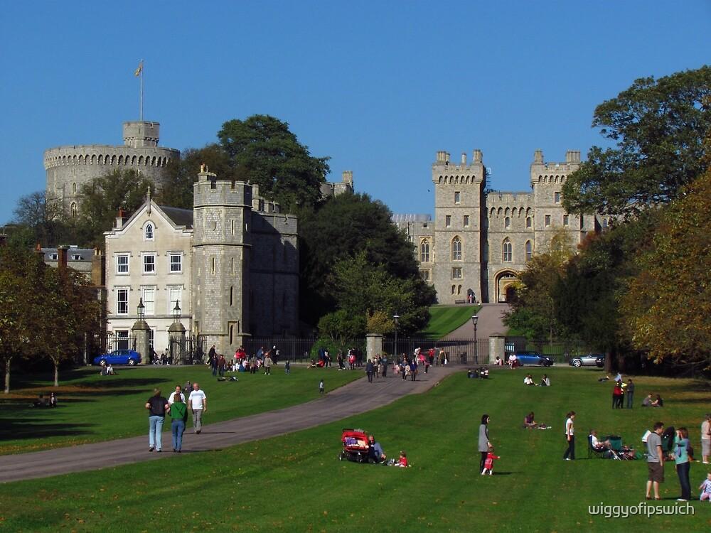 Tourists, Great Park, Windsor by wiggyofipswich