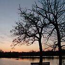 Sundown by Tracy Wazny