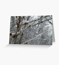 Rime and Reason Greeting Card