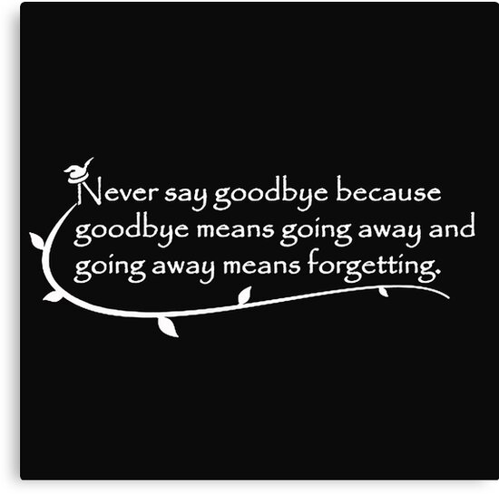 Never Say Goodbye Peterpan Canvas Prints By Globbie Redbubble