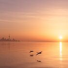 Free Flight Daybreak by Georgia Mizuleva