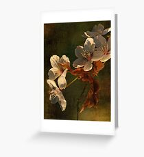 Spring Memory Greeting Card
