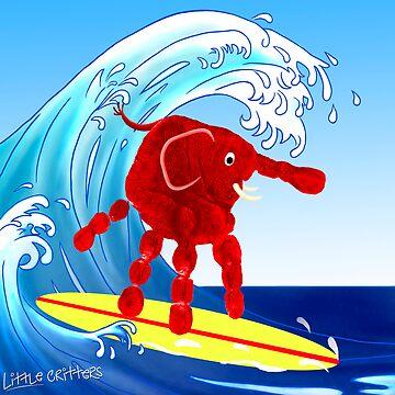 Wave Rider Boy  by CarolH