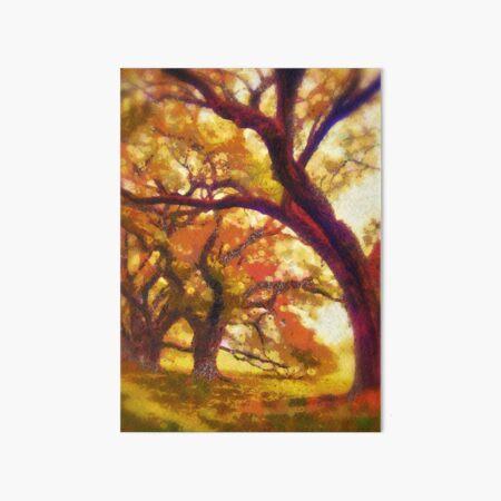 Southern live oaks  Art Board Print