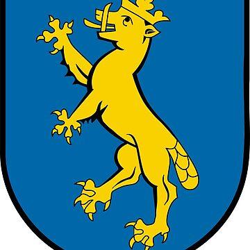 Biberach an der Riss coat of arms, Germany by PZAndrews