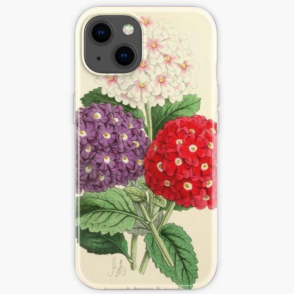 Andrews, James (1801-1876) - The Floral Magazine 1869 - Verbenas iPhone Soft Case