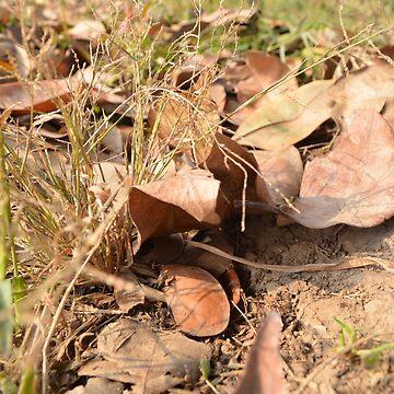 Autumn Scraps by mubesher