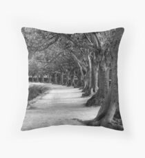 Chromotone Throw Pillow