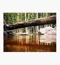 Florence Falls Photographic Print