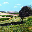 On a Southerly Breeze by Paula Oakley
