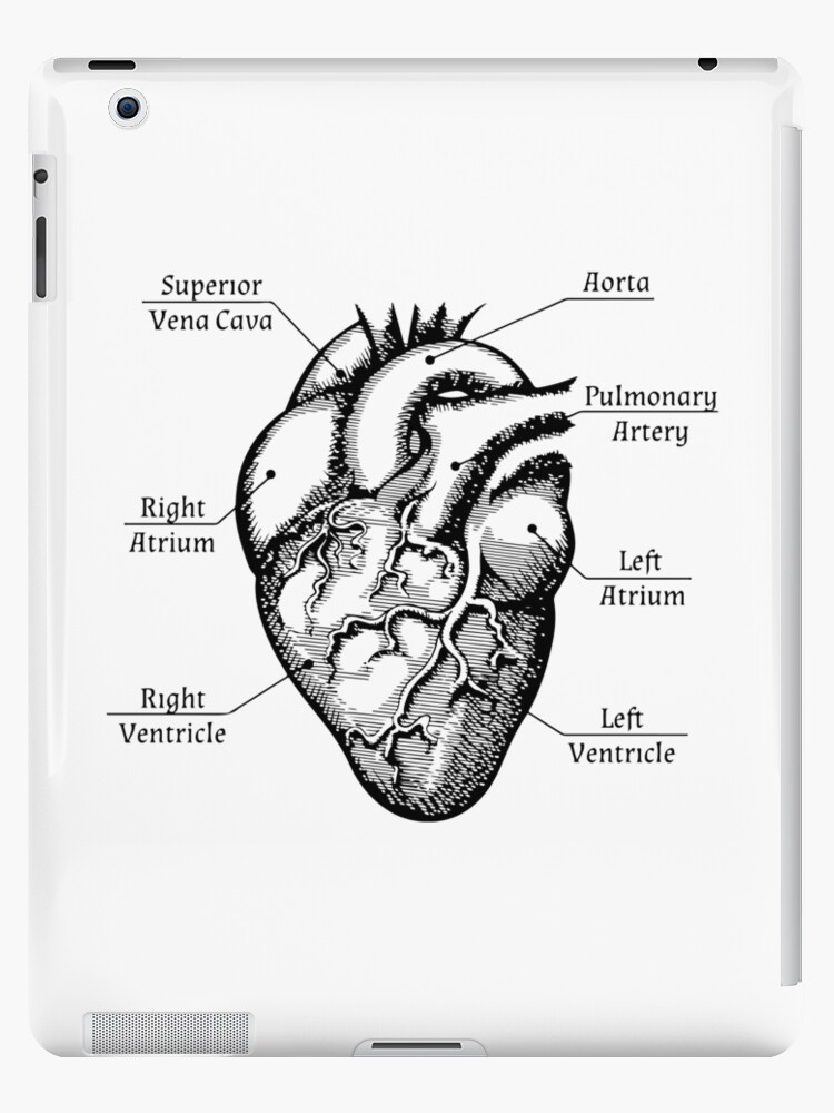 Anatomical Heart Funny Cardiac Nurse Med Student Valentines Day