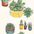 plants by Abi Latham