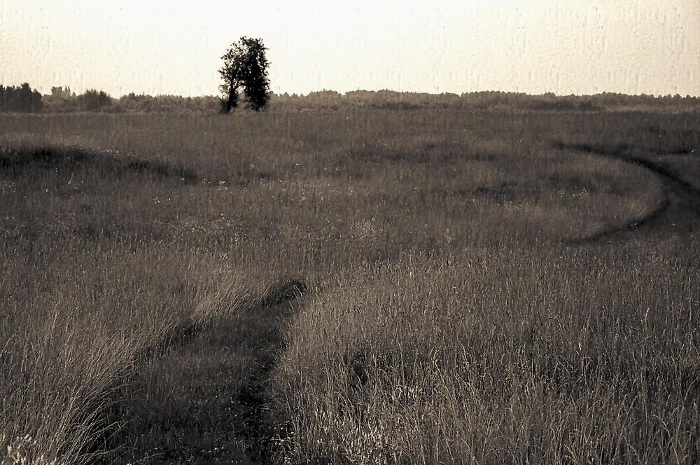 Field ways by Yevgeni Kacnelson