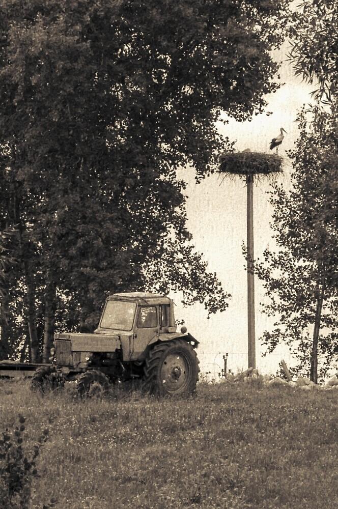 Stork vs tractor by Yevgeni Kacnelson