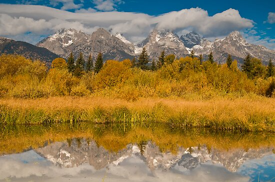 Teton Mountains Reflected in the Black Tail Ponds, Grand Teton National Park, Wyoming by Albert Dickson