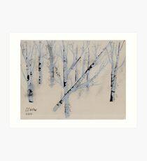 Birch Trees in Winter Art Print