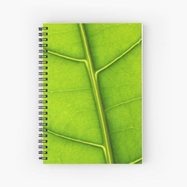 Eco green leaf Spiral Notebook