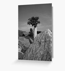 The Elder Tree Greeting Card