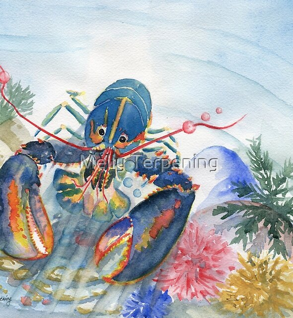 Colorful Sea Lobster  by Melly Terpening