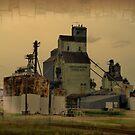 Farm Union Grain by TingyWende