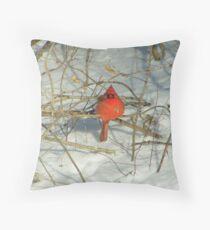 cold cardinal   brrrr! Throw Pillow